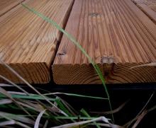 Террасная доска из лиственницы от компании ЛесРезерв